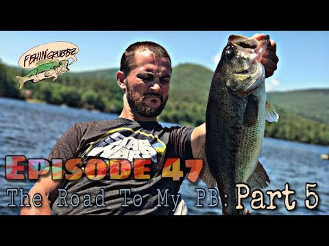 Nicole's PB Smallmouth and a Couple GIANT NH Largemouth: Road To My PB: Part 5