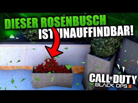 DIESER ROSENBUSCH IST UNAUFFINDBAR | BLACK OPS 3