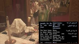 Palm Sunday Liturgy | HG Bishop Abraham 2019 | St. Mark Coptic Orthodox Church LA