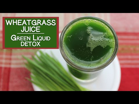 Wheatgrass Juice, The Fresh Green Liquid Detox Aid