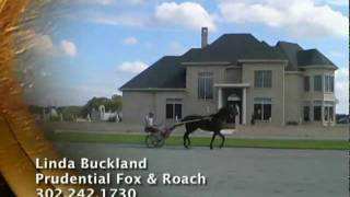 Standardbred Training Farm For Sale - Hartly, Delaware