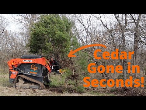 Crazy Machine Pulls Trees Like Carrots! Danuser Intimidator and Kubota Skid Steer!