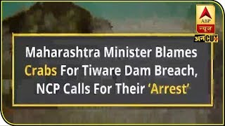 Maharashtra Minister Blames Crabs For Tiware Dam Breach, NCP Calls For Their 'Arrest' | ABP Uncut