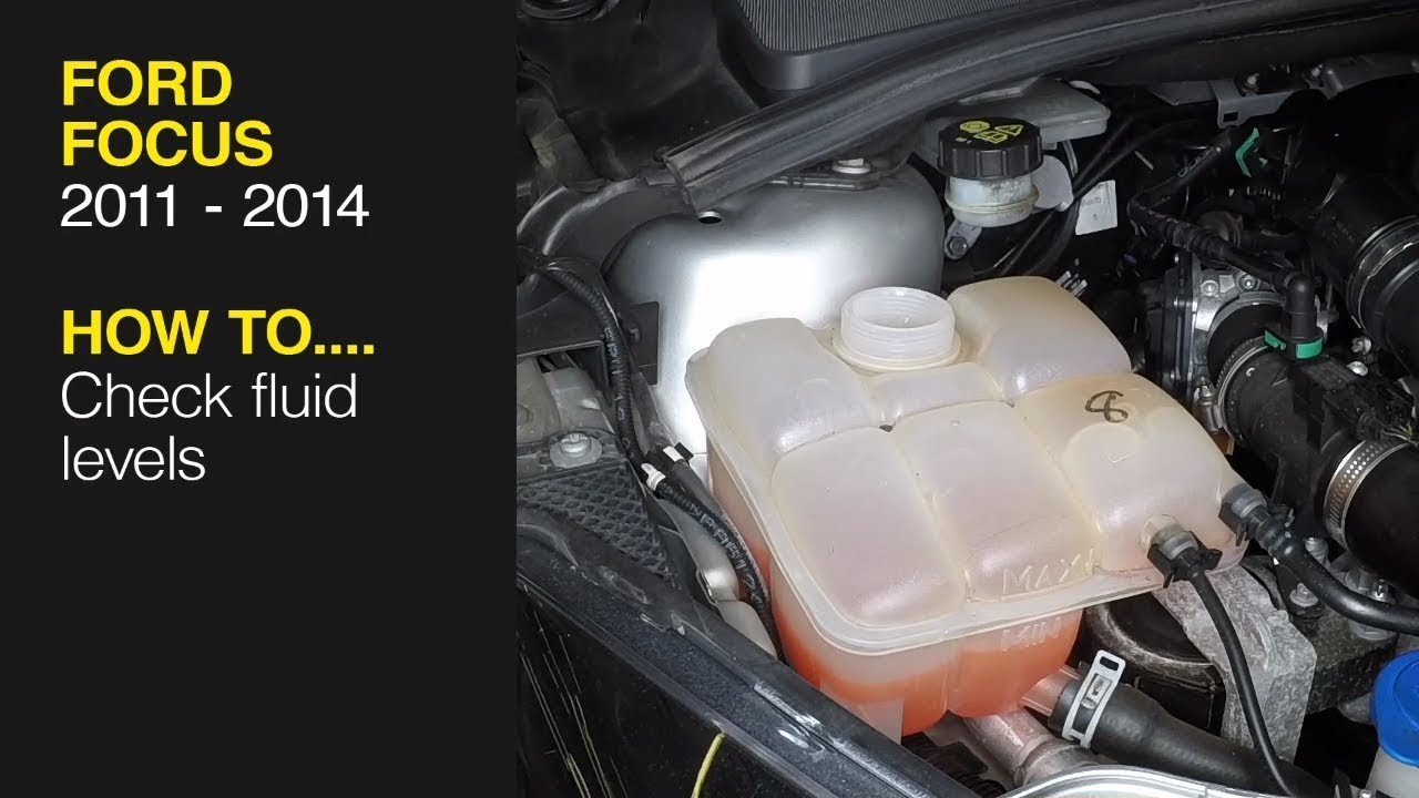 How To Check The Fluid Levels On A Ford Focus 2011 2014 Youtube