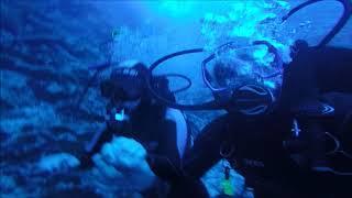 Фото погружение на 50метров. красное море