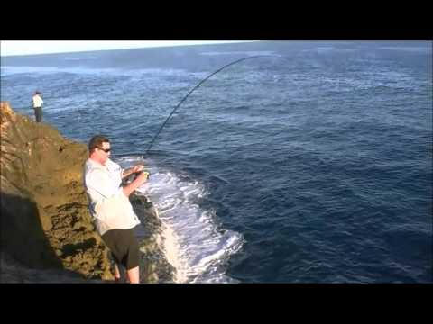Huge Barracuda caught while fishing at Dirk Hartog Island
