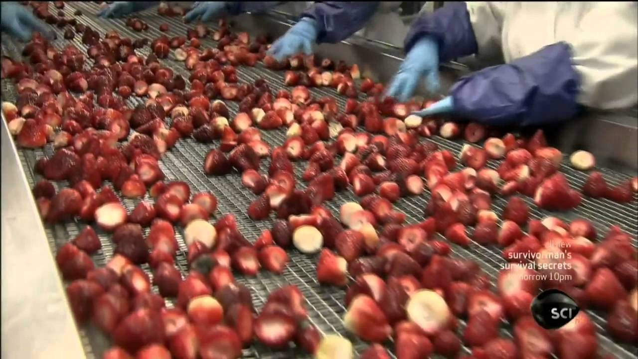 How Its Made Frozen Fruit Youtube