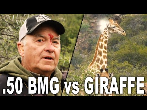 .50 BMG Vs GIRAFFE | Getting Scoped By A .50 BMG