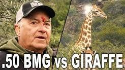 .50 BMG vs GIRAFFE   Getting scoped by a .50 BMG
