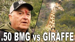 .50 BMG vs GIRAFFE | Getting scoped by a .50 BMG