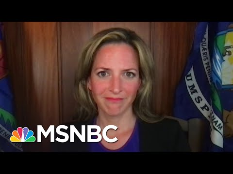 MI Secretary Of State: GOP Is Led By 'People Who Don't Believe In Democracy'   The Last Word   MSNBC