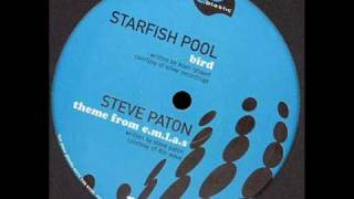 Starfish Pool - Bird