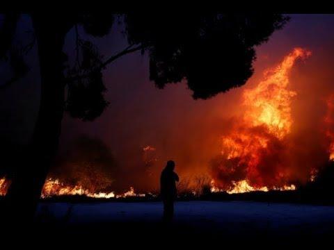 Yunanistan'daki yangın Atina'yı sardı