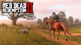 Red Dead Redemption 2 - HUGE GAMEPLAY INFO! New Mexico Region, Boats, Physics, Combat & More!