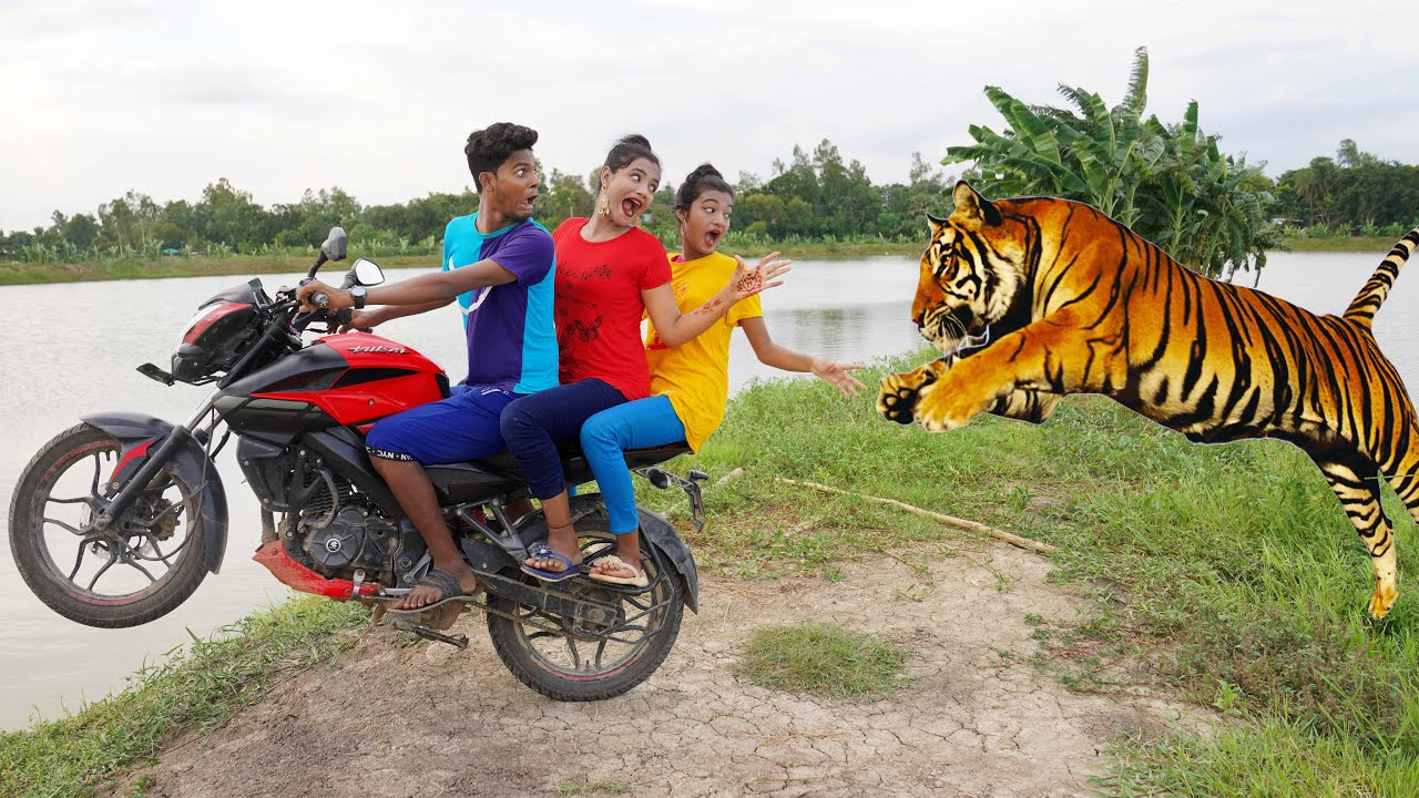 Must Watch New Funniest Comedy video 2021 amazing comedy video 2021 Episode 116 By Busy Fun Ltd