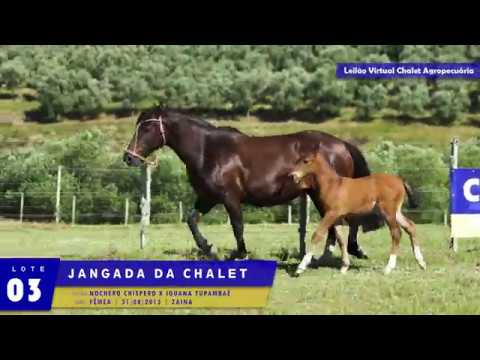 LOTE 03 - Jangada da Chalet