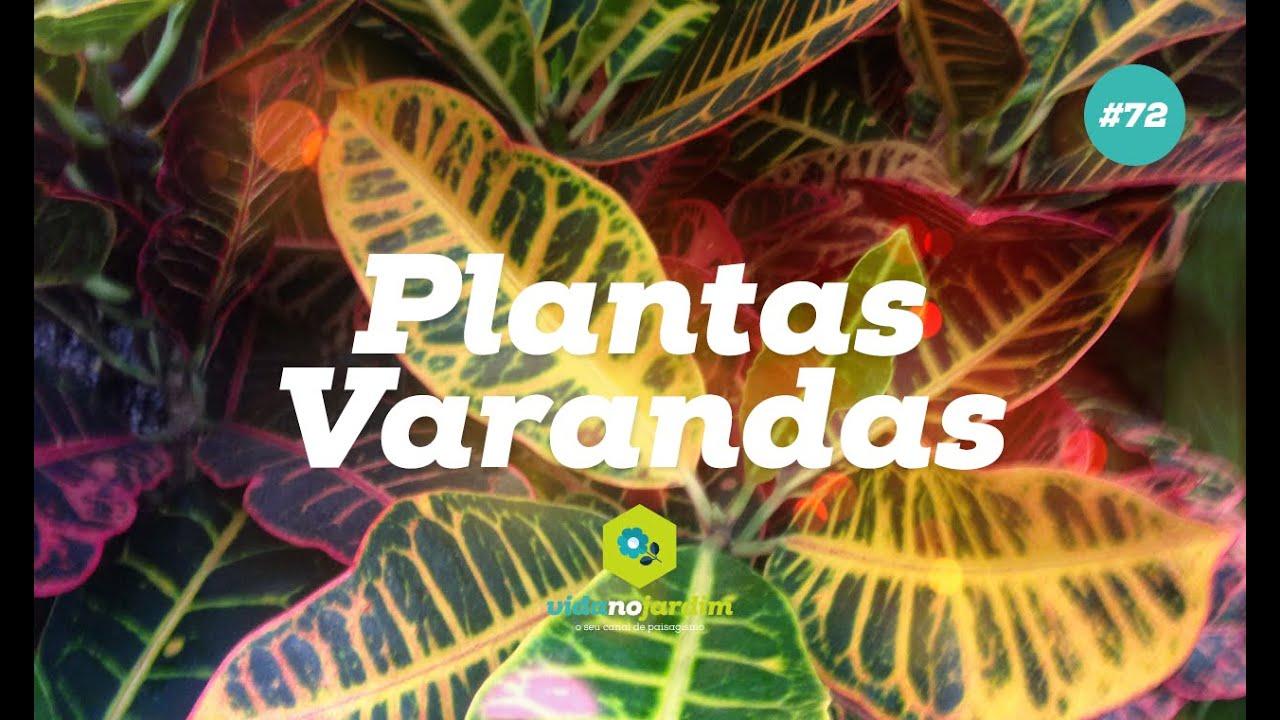 Plantas para varandas 72 youtube for Plantas para veredas con flores