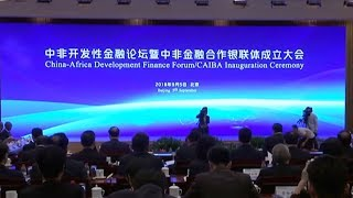 Leaders establish China-Africa Investment Bank Association in Beijing