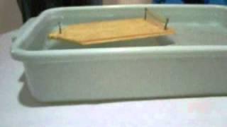 Modelo de Foguete - Quantidade de Movimento e Impulso - Muri...