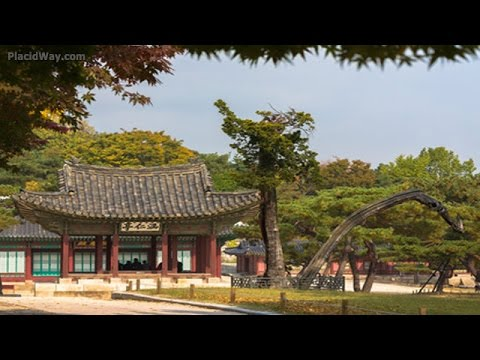 Medical Tourism in South Korea - Low Cost Health Care Travel