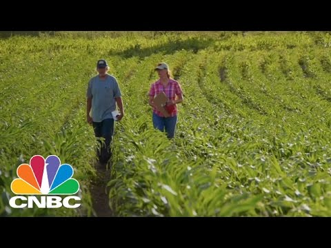 Greenpeace Leaked A Draft Of TTIP: Find Out What's In It | CNBC