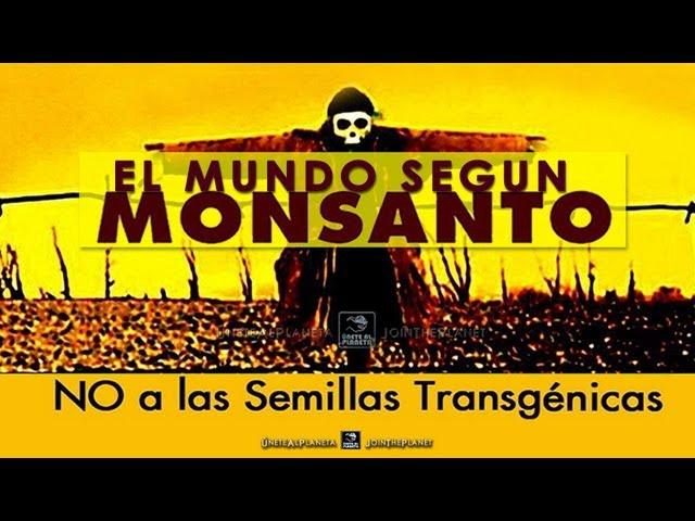 """Resultado de imagen para árboles GM transgénicos""""o superárboles"""" por Monsanto,"""