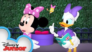 Royal Delivery | Minnie's Bow-Toons | Disney Junior