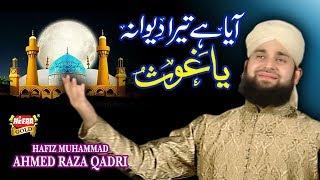 Hafiz Ahmed Raza Qadri - Aaya Hai Tera Diwana - Mera Koi Nahi Hai Tere Siwa 2015