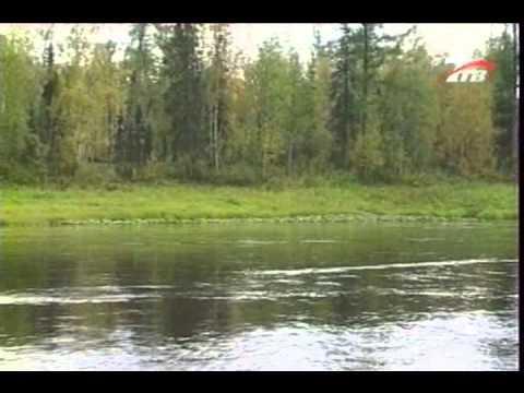 диалоги о рыбалке таймень хариус ленок