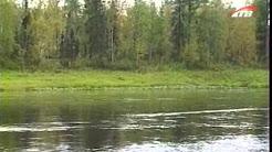 Рыбалка в сибире. Ловля Хариуса, Ленка, Тайменя, Щуки нахлыстом.