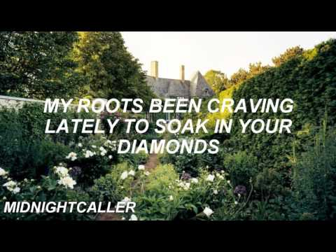 Kat Dahlia - My Garden