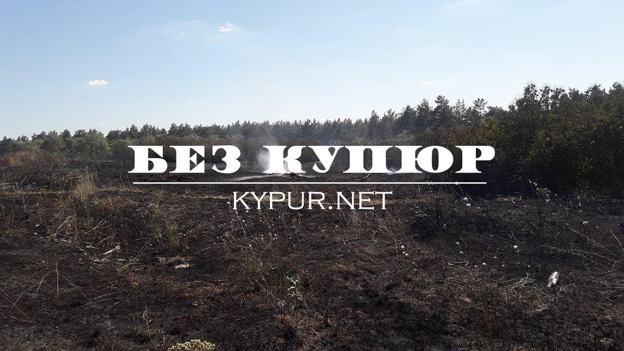 Без Купюр У Кропивницькому горів ліс поруч із житловими будинками. ФОТО. ВІДЕО Події  рятувальники пожежа ліс 2020 рік