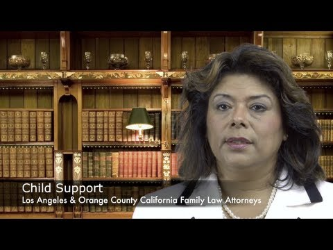 http://www.yanezlaw.com  http://www.yanezlaw.com/california-family-law/orange-county-child-support-and-spousal-support/ 714-665-6600 What is child support? Child support is a monthly financial payment by the non-physical custodial parent to the physical custodial parent towards their child's daily needs. Child support gives financial support for things such as the child's shelter, food, clothing, medical expenses, and educational costs. Child support laws guarantees that parents take financial accountability for their children, even after their marriage has ended.