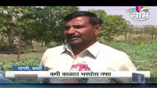 Watermelon farming success story of Subhash Jadhav