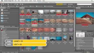 15 - Рейтинг и маркировки изображения  (фотошоп с нуля)