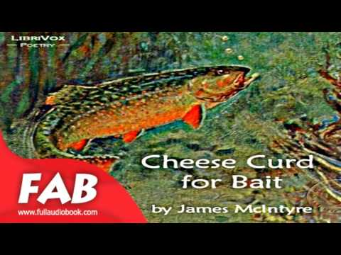 Cheese Curd for Bait Full Audiobook by James MCINTYRE by Multi-version