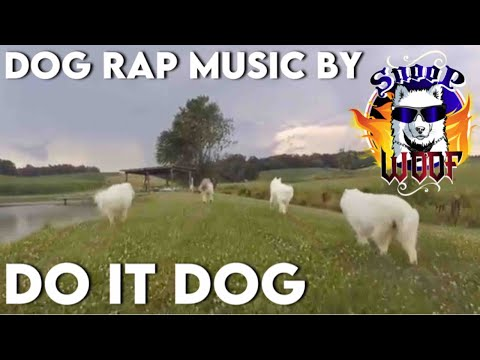 Husky Dogs Free-Ranging in between Storms July 17th 2017