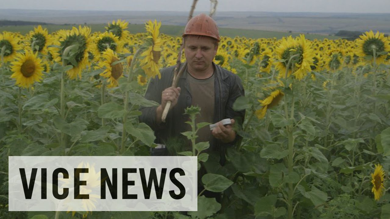 Vice news russian roulette dispatch 15
