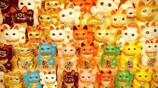 Кот Манэки-нэко 😻 Денежный Котик счастья и удачи🌈🌎🍀+ Бинауральные ритмы