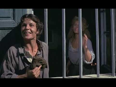 HET GEZIN VAN PAEMEL (1986) - Full Movie