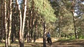 Рокси берет уроки  верховой езды (1)