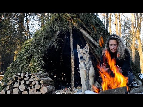 solo-winter-overnighter-in-a-bushcraft-hut-|-coyotes-howl,-woken-by-snowstorm