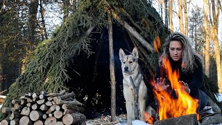 SOLO WINTER OVERNIGHTER in a BUSHCRAFT HUT | Coyotes Howl, Woken by SNOWSTORM