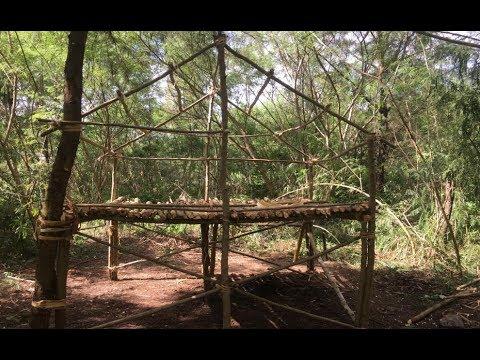 Primitive Survival Skills: Primitive Technology Build A Hut