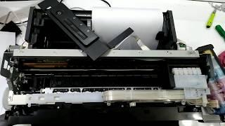 Epson printer L1800 Paper jam error