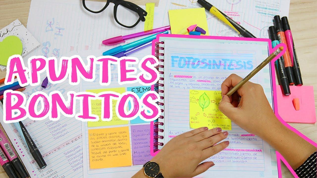 8 ideas para decorar y ordenar tus apuntes what the - Ideas para ordenar ...