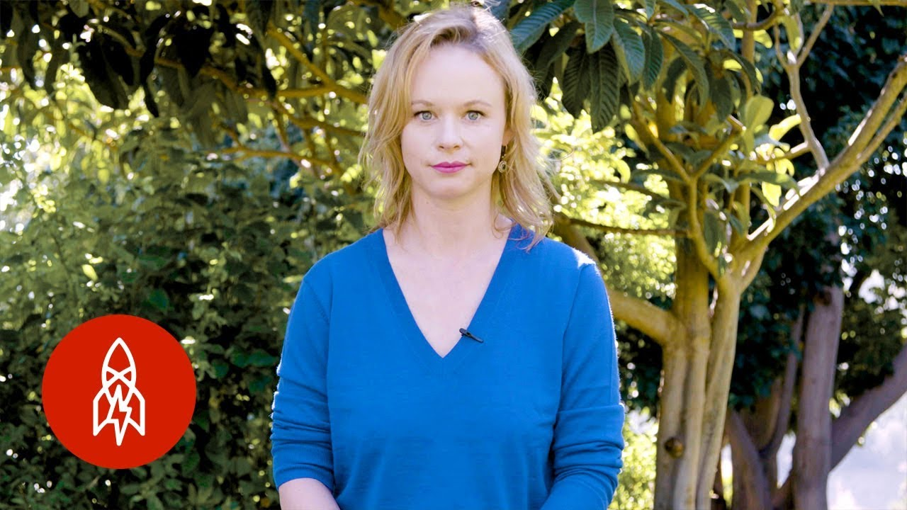 Thora birch celebrity movie archive