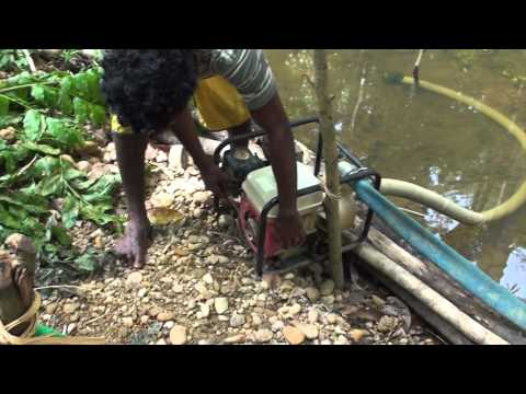 Fish Creek, Gulf Province, PNG. Part 4