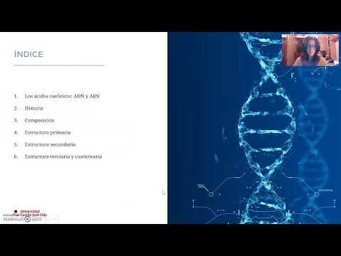 ácidos Nucleicos La Estructura Del Adn Lessons Tes Teach