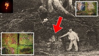 330,000 Year Old Man-Made Wall Found In New Zealand?